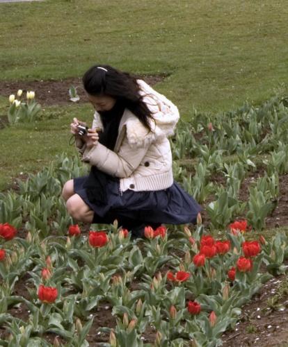 Girl-n-tulips