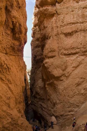 navajo-trail-narrow-canyon